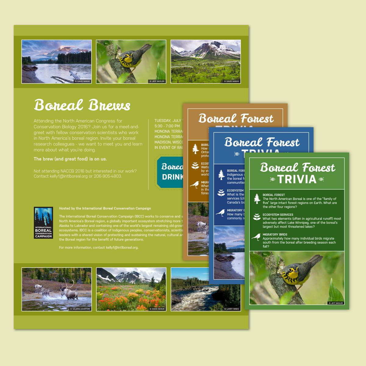 BSI conference materials