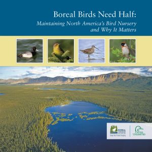 Scientific Report: Boreal Birds Need Half