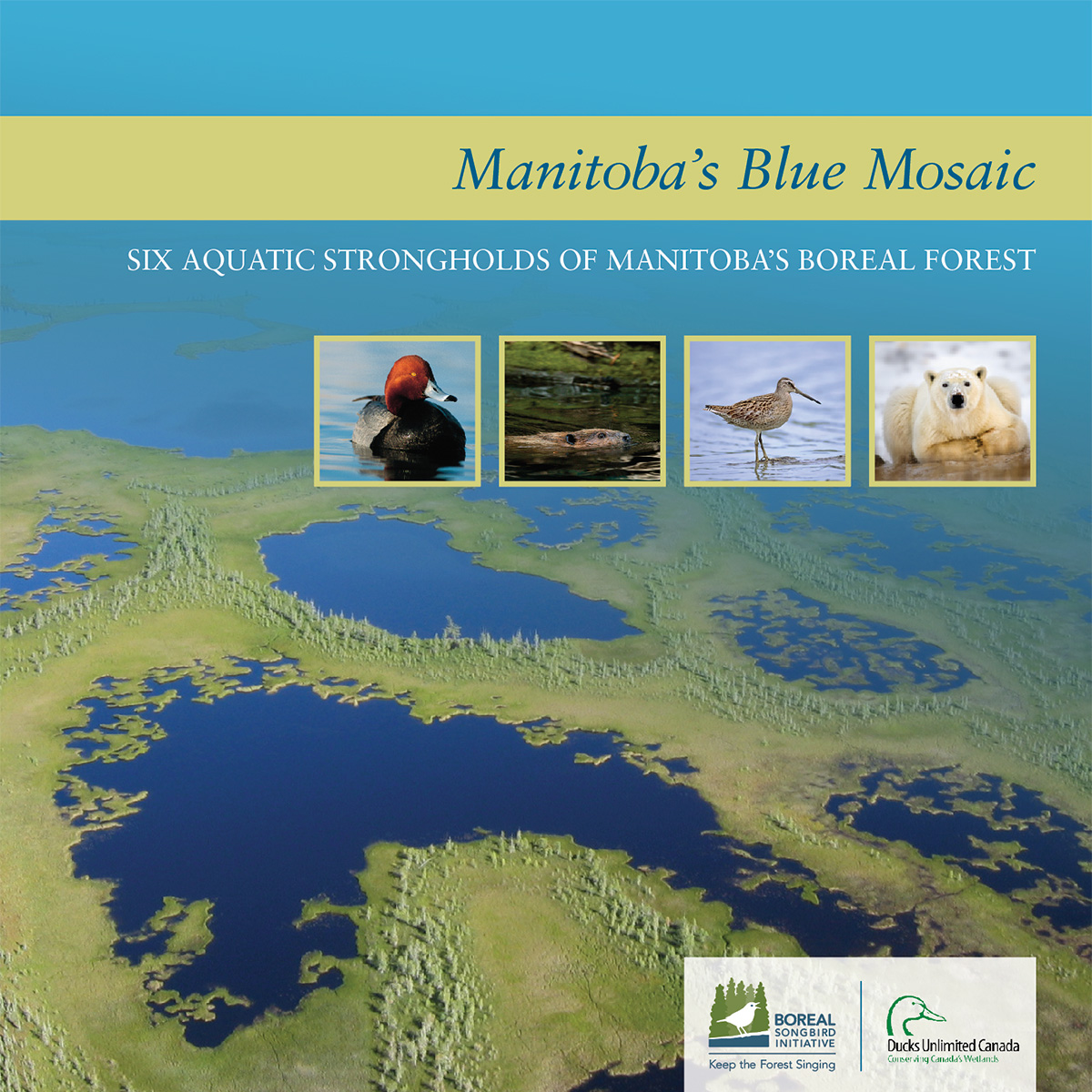 Scientific Report: Manitoba's Blue Mosaic